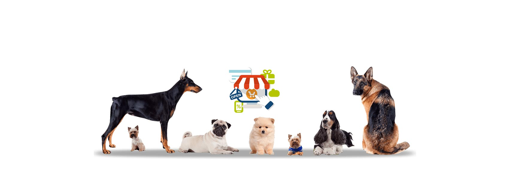 How To Start An Online Pet Store Ecommerce Website In India And Market It Online Finsoft It Solutions